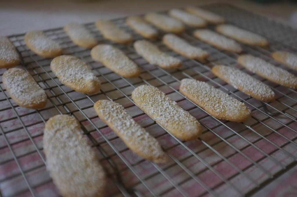 """Les biscuits """"langue de chat"""" refroidissent sur une grille"""