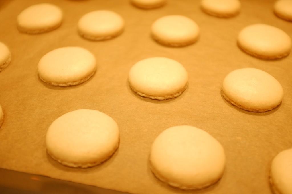 Les macarons sans gluten à la sortie du four
