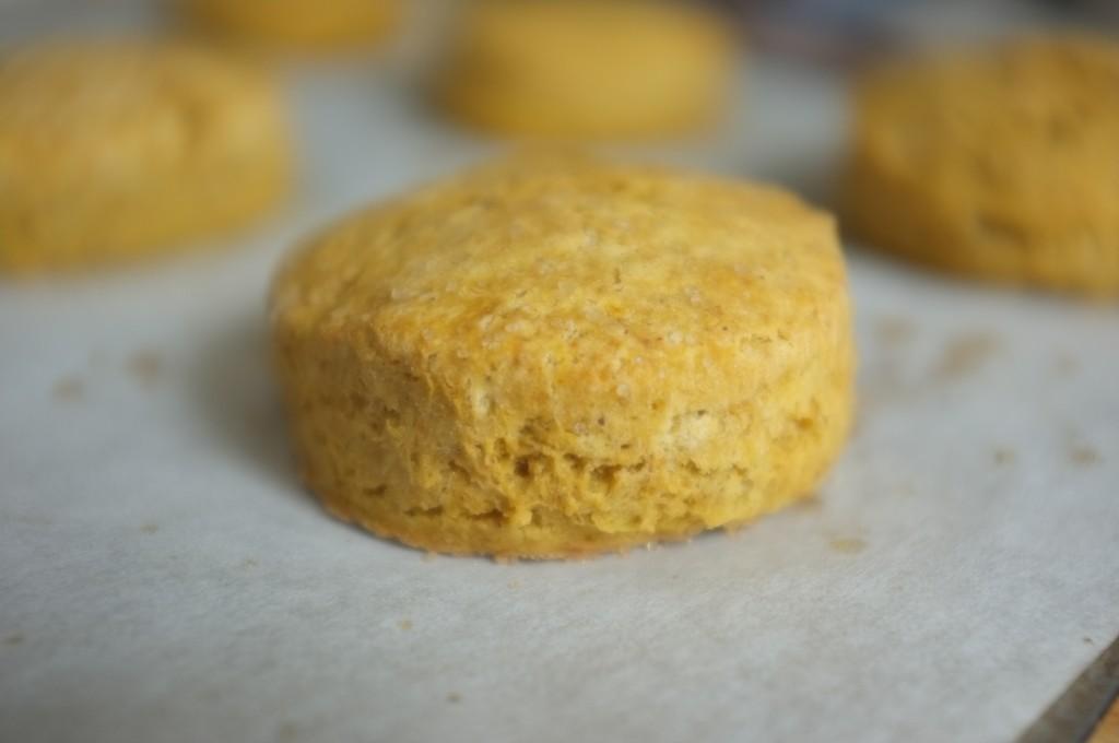 Un scones sans gluten au potiron et sirop d'érable tout doré et tout gonflé
